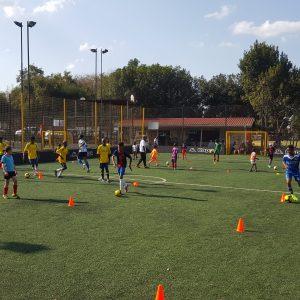Tetra Brazil Training Programe